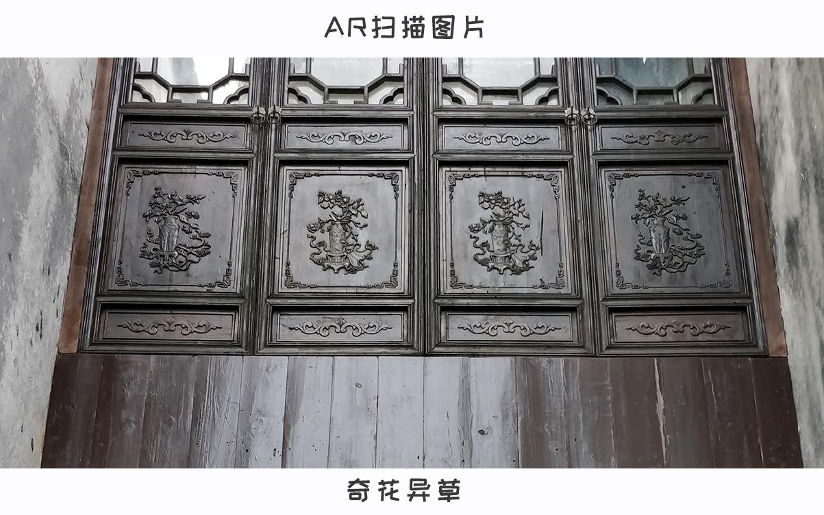 奇花异草.jpg